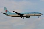 柏の子?さんが、成田国際空港で撮影した大韓航空 737-9B5の航空フォト(写真)