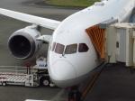 Naiki_SIsLDさんが、宮古空港で撮影した全日空 787-8 Dreamlinerの航空フォト(写真)