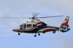 ピーチさんが、岡山空港で撮影した熊本県防災消防航空隊 AS365N3 Dauphin 2の航空フォト(写真)
