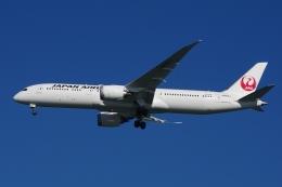zettaishinさんが、ジェネラル・エドワード・ローレンス・ローガン国際空港で撮影した日本航空 787-9の航空フォト(飛行機 写真・画像)