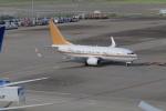 yoshi_350さんが、羽田空港で撮影した南山公務 737-7ZH BBJの航空フォト(写真)
