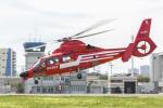 mameshibaさんが、東京ヘリポートで撮影した東京消防庁航空隊 AS365N3 Dauphin 2の航空フォト(写真)