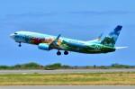 ちかぼーさんが、ダニエル・K・イノウエ国際空港で撮影したアラスカ航空 737-890の航空フォト(写真)