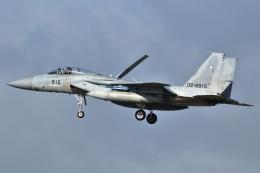 航空フォト:02-8915 航空自衛隊 F-15J Eagle