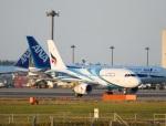 garrettさんが、成田国際空港で撮影したバンコクエアウェイズ A319-131の航空フォト(写真)