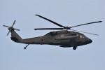 デルタおA330さんが、横田基地で撮影したアメリカ陸軍 UH-60L Black Hawk (S-70A)の航空フォト(写真)