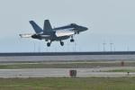 ばとさんが、岩国空港で撮影したアメリカ海軍 F/A-18E Super Hornetの航空フォト(写真)