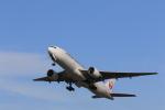 Fly Yokotayaさんが、伊丹空港で撮影した日本航空 777-246の航空フォト(写真)