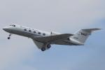 キイロイトリさんが、中部国際空港で撮影したダイヤモンド・エア・サービス G-1159 Gulfstream IIの航空フォト(写真)