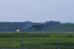 masatakaさんが、新田原基地で撮影した航空自衛隊 F-15DJ Eagleの航空フォト(写真)