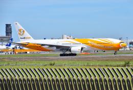 成田国際空港 - Narita International Airport [NRT/RJAA]で撮影されたノックスクート - NokScoot [XW/NCT]の航空機写真