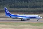 ぽっぽさんが、庄内空港で撮影した全日空 737-881の航空フォト(写真)