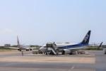 ぽっぽさんが、石垣空港で撮影した全日空 737-781の航空フォト(写真)