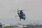 t.watさんが、伊丹空港で撮影した兵庫県警察 EC155B1の航空フォト(写真)