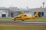 t.watさんが、八尾空港で撮影した朝日航洋 AS365N3 Dauphin 2の航空フォト(写真)