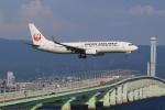 キイロイトリさんが、関西国際空港で撮影した日本航空 737-846の航空フォト(写真)