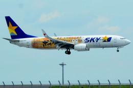 daisuke1228さんが、羽田空港で撮影したスカイマーク 737-86Nの航空フォト(飛行機 写真・画像)