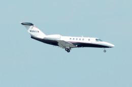 daisuke1228さんが、羽田空港で撮影したユタ銀行 525 CitationJetの航空フォト(飛行機 写真・画像)