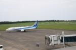 青春の1ページさんが、鳥取空港で撮影した全日空 737-881の航空フォト(写真)