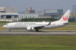 キイロイトリさんが、伊丹空港で撮影した日本航空 737-846の航空フォト(写真)