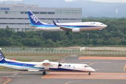 funi9280さんが、新千歳空港で撮影した全日空 737-881の航空フォト(飛行機 写真・画像)