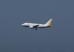 T.Sazenさんが、関西国際空港で撮影した中国国際航空 A318-112 CJ Eliteの航空フォト(写真)