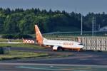 T.Sazenさんが、成田国際空港で撮影したチェジュ航空 737-8Q8の航空フォト(写真)