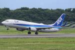 キイロイトリさんが、長崎空港で撮影した全日空 737-881の航空フォト(写真)