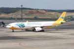 utarou on NRTさんが、成田国際空港で撮影したセブパシフィック航空 A330-343Xの航空フォト(写真)