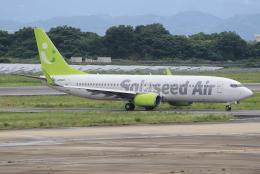 キイロイトリさんが、長崎空港で撮影したソラシド エア 737-86Nの航空フォト(写真)