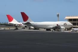ダニエル・K・イノウエ国際空港 - Honolulu International Airport [HNL/PHNL]で撮影された日本航空 - Japan Airlines [JL/JAL]の航空機写真