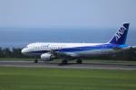 Sugikiyoさんが、鳥取空港で撮影した全日空 A320-211の航空フォト(写真)