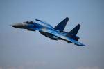 brasovさんが、フェアフォード空軍基地で撮影したウクライナ空軍 Su-27の航空フォト(写真)