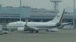 AE31Xさんが、羽田空港で撮影したマレーシア空軍 737-7H6 BBJの航空フォト(写真)