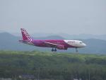 むらさめさんが、新千歳空港で撮影したピーチ A320-214の航空フォト(写真)