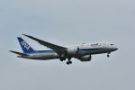 yotaさんが、成田国際空港で撮影した全日空 787-8 Dreamlinerの航空フォト(写真)