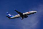 yonsuさんが、伊丹空港で撮影した全日空 737-881の航空フォト(写真)