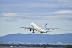 シャークレットさんが、旭川空港で撮影したエアプサン A320-232の航空フォト(写真)