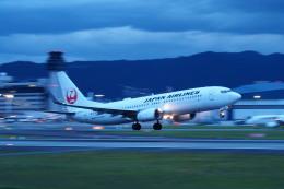 yonsuさんが、伊丹空港で撮影した日本航空 737-846の航空フォト(写真)
