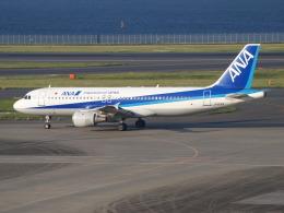 鷹71さんが、羽田空港で撮影した全日空 A320-211の航空フォト(写真)