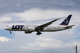VEZEL 1500Xさんが、成田国際空港で撮影したLOTポーランド航空 787-8 Dreamlinerの航空フォト(写真)
