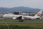 Gpapaさんが、伊丹空港で撮影した日本航空 767-346/ERの航空フォト(写真)