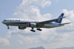 M.Ochiaiさんが、宮崎空港で撮影した全日空 777-281/ERの航空フォト(写真)