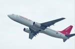 mild lifeさんが、関西国際空港で撮影したイースター航空 737-86Nの航空フォト(写真)