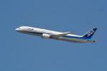 kaz787さんが、伊丹空港で撮影した全日空 787-9の航空フォト(写真)