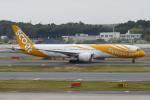 TUILANYAKSUさんが、成田国際空港で撮影したスクート 787-9の航空フォト(写真)