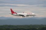 funi9280さんが、新千歳空港で撮影したイースター航空 737-86Jの航空フォト(写真)