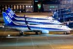Ariesさんが、中部国際空港で撮影した全日空 737-881の航空フォト(写真)