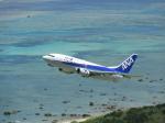 おっつんさんが、新石垣空港で撮影したANAウイングス 737-54Kの航空フォト(写真)