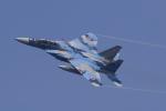 多楽さんが、茨城空港で撮影した航空自衛隊 F-15DJ Eagleの航空フォト(写真)